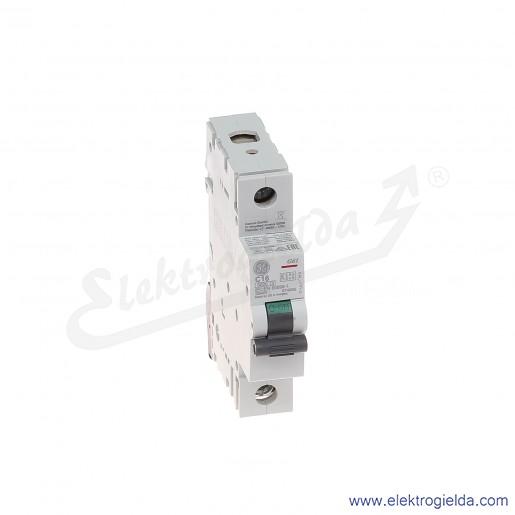 Wyłącznik nadprądowy G61C16 1P AC 6kA